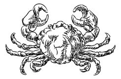 Crab Seafood Food Grunge Style Hand Drawn Icon Stock Images