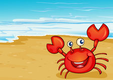 A crab at the seashore Stock Photo