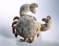 Crab-shaped bread. Food, gastronomy,culinary,cookery Royalty Free Stock Photography