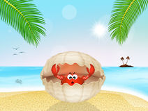 Crab in the shell on the beach. Illustration of crab in the shell on the beach Royalty Free Stock Images