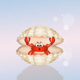 Crab in the shell Stock Images