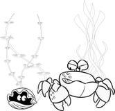 Crab and shellfish Royalty Free Stock Images