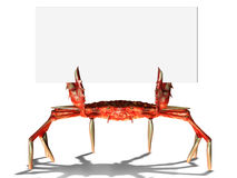 Crab with sign Stock Image