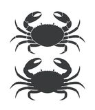 Crab silhouette. Isolated crab on white background Stock Photography