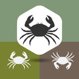 Crab Silhouettes. Dangerous Sea Crab Silhouettes Vector Illustration Stock Photos