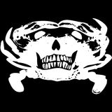 Crab Skull Stock Photo