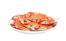 Crab steamed seafood isolated on white background Royalty Free Stock Photography
