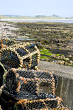 Crab traps Royalty Free Stock Image