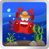 Crab underwater Royalty Free Stock Images