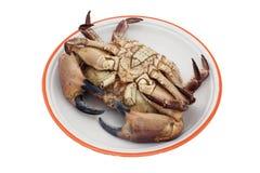Crab upside down Stock Photo