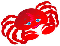 Crab. Vector illustration  Stock Image