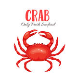 Crab vector illustration in cartoon style Stock Photo