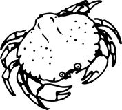 Crab. Vector illustration Stock Images