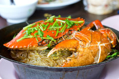 Crab and vermicelli Stock Photography