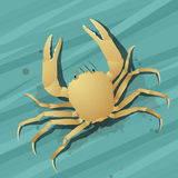 Crab in the water Stock Photos