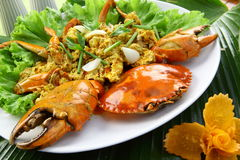Crab with yellow curry powder stock photos