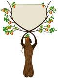 Crabapple drzewo trzyma plakat Obraz Stock