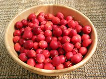 Crabapples in a bowl. Crabapples in a wooden bowl Stock Photos