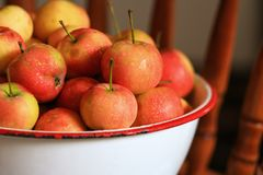 Crabapples in a bowl. Delicious organic crabapples in a white antique bowl Stock Photos