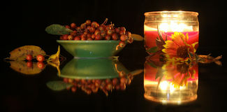Crabapples N Daisy Glow Royalty-vrije Stock Foto's