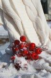 Crabapples vermelhos na cobertura branca Fotos de Stock Royalty Free