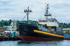 Crabber/offerta, coraggiosa al terminale del ` s dei pescatori, Seattle immagine stock libera da diritti