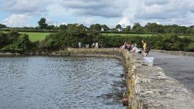 Crabbing w pływowym młyńskim basenie przy Carew fotografia royalty free