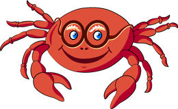 Crabe Illustration Stock