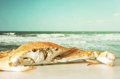 Crabe Photographie stock