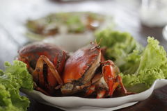 crabe bleu cuit à la vapeur Images stock