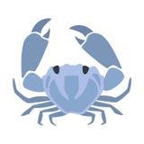 Crabe bleu, une partie de série d'illustrations de Marine Animals And Reef Life de la mer Méditerranée Image stock