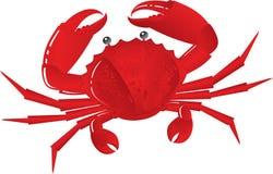 Crabe bouilli illustration stock