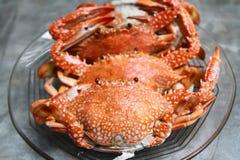 Crabe bouilli Images libres de droits
