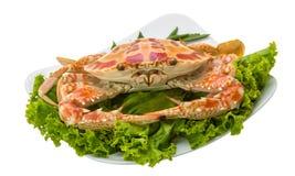 Crabe bouilli photos stock