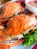 crabe brûlé photographie stock