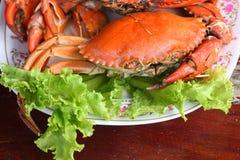 Crabe cuit à la vapeur photo libre de droits