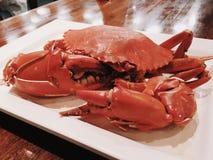 Crabe cuit à la vapeur Image stock