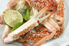 Crabe cuit photo libre de droits