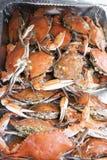 Crabe cuit Photos libres de droits