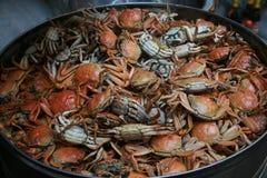 Crabe cuit à la vapeur Photo stock