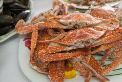 Crabe cuit à la vapeur Images libres de droits