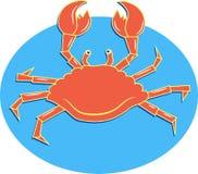 Crabe de mer Photographie stock