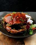 Crabe de sauce au poivre Photo libre de droits