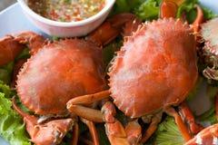 Crabe de vapeur Images stock