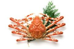 Crabe géant Photographie stock