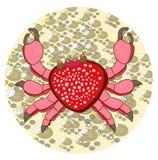 Crabe hawaïen Photographie stock libre de droits