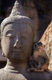 Crabe mangeant le macaque sur la statue de Bouddha Image stock