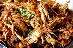 Crabe mou frit d'interpréteur de commandes interactif Photos stock