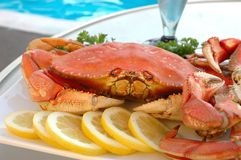 Crabe par Pool Photographie stock