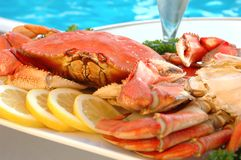 Crabe par Pool Image stock